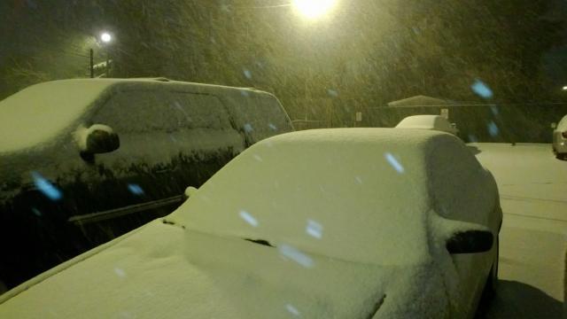 Snow,jpg