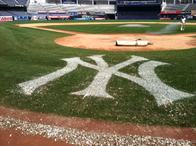Yanks Field