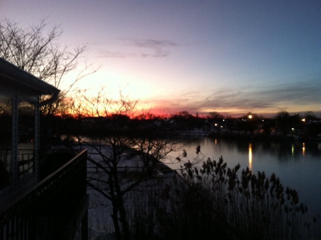 fiery sunset reeds