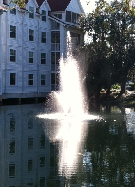 DB Fountain