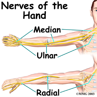 Give That Nerve A Hand | Pressvision\'s Blog