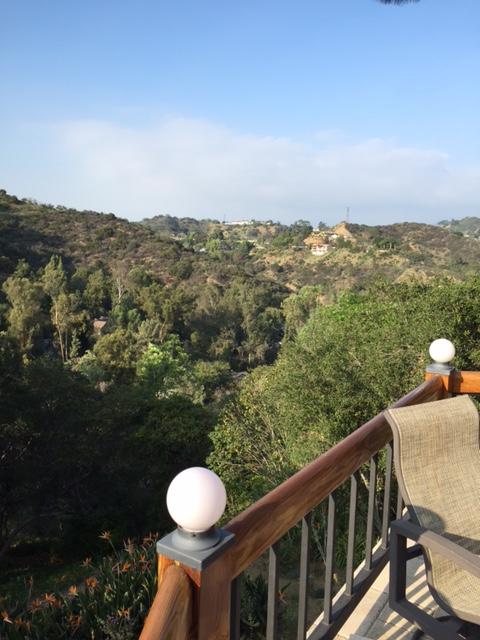 Studt View