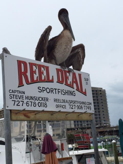 Friday Pelican Sign